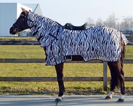 QHP Fliegen-Ausreitdecke mit Hals, zebra, gute, stabile Qualität